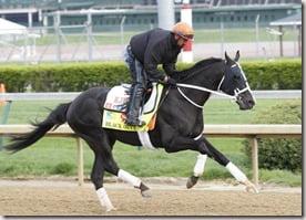 2013 Kentucky Derby Black Onyx