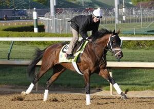 2013 Kentucky Derby Palace Malice