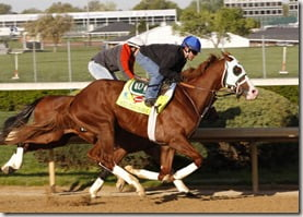 2013 Kentucky Derby Will Take Charge,