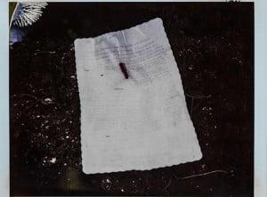 kurt-cobain-suicide-scene picture