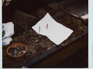 kurt-cobain-suicide-scene pictures