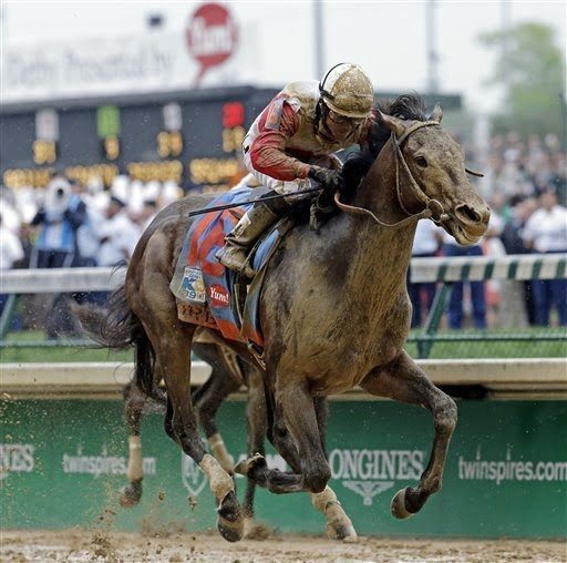 Orb- 2013 Kentucky Derby Winner!!