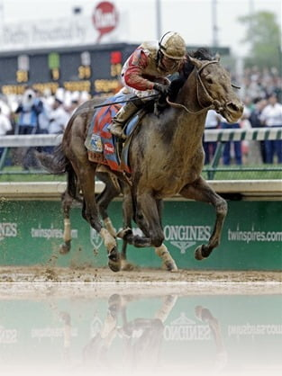 Orb 2013 Kentucky Derby winner