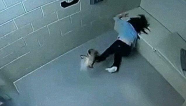 Cassandra Feuerstein Chicago Woman Suffered Horrific