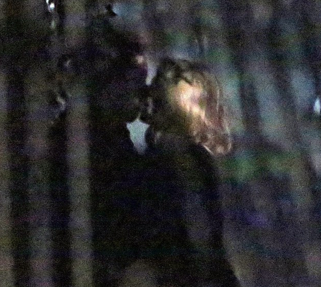 Cheating Scandal!!! Who is the Mystery Blonde Tim Burton was caught Kissing????