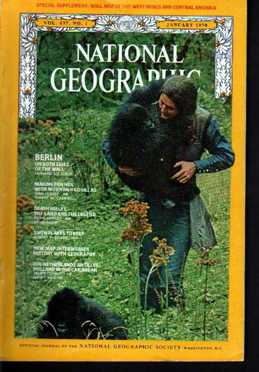 Zoologist Dian Fossey'...