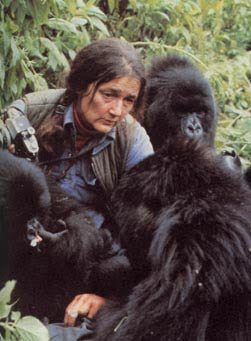 """dian fossey life and death Theories about dian fossey's murder are varied but have  """"when you realize  the value of all life, you dwell."""