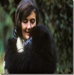 Gorillas in the Mist Dian Fossey picture