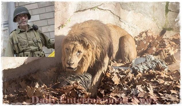 Justo Jose MP Barcelona zoo lion-pics