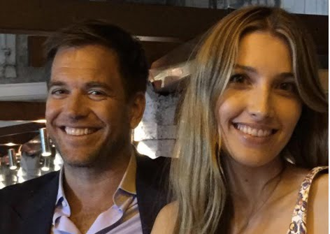 Actor Michael Weatherly's Wife Bojana Jankovic