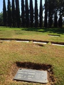 ron Goldman grave